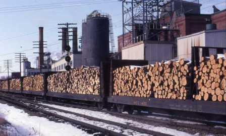 N Scale Kits center beam pulpwood car